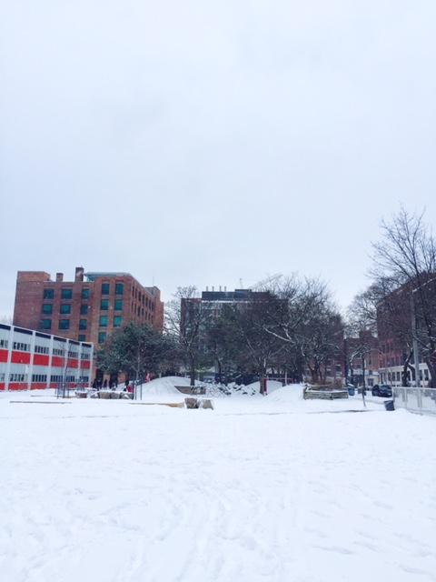 School Toronto