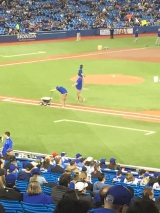 blue jays baseball diamond arena