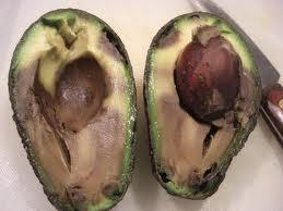 avocado-rotten